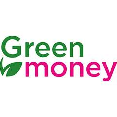 Займ в Green Money